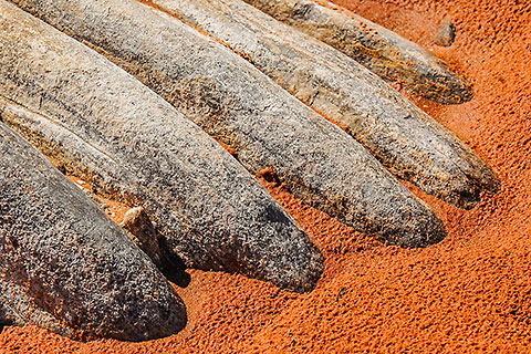 rocks in red sand [©2007 paulgodard.com]