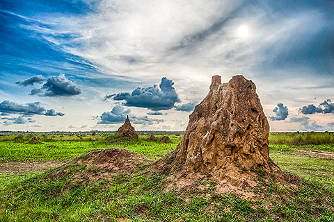 termite hills under clouds [©2014 paulgodard.com]