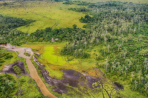 aerial view | forest with savana patches | Lango camp lodge [©2014 paulgodard.com]