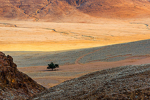 desert plain & mountains at sunset [©2015 paulgodard.com]