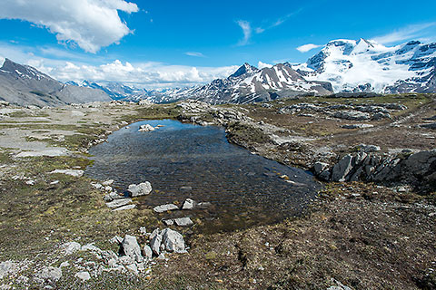 small lake on alpine meadow & mountains [©2017 paulgodard.com]