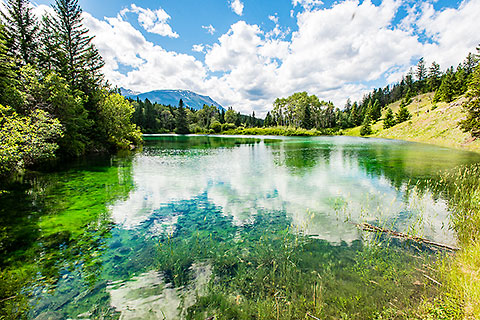 lake #2 clear blue-green water & pine tree forest [©2017 paulgodard.com]