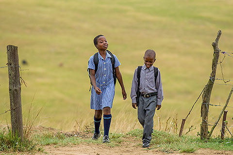 Zulu village : children coming back from school [©2008 paulgodard.com]